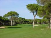 Plots of land in fantastic location Vilamoura