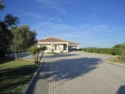 5 bedroom villa with vineyard