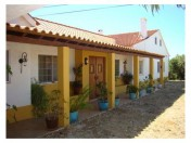 Beautiful 3 bedroom farm in Santarem